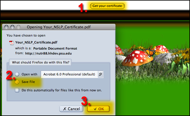 certificate graphic 3