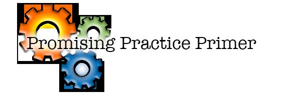 Promising Practices Primer Header